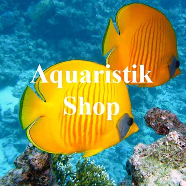 Aquaristik Shop