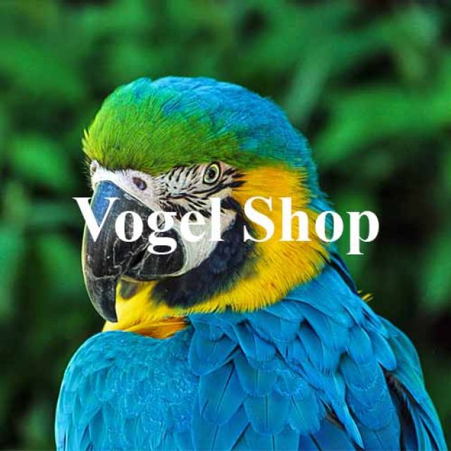 Vogel Shop
