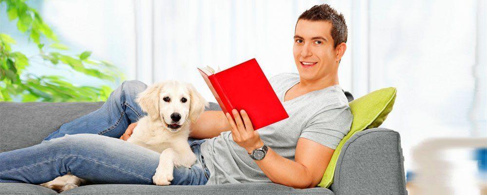 Wenn Freunde auf Ihren Hund aufpassen!