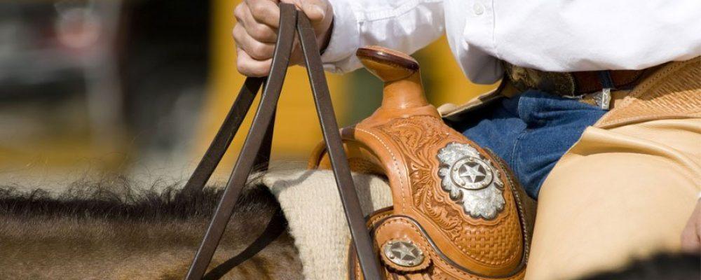 Das Westernreiten ist ein Reitstil, der von den Cowboys entstammt